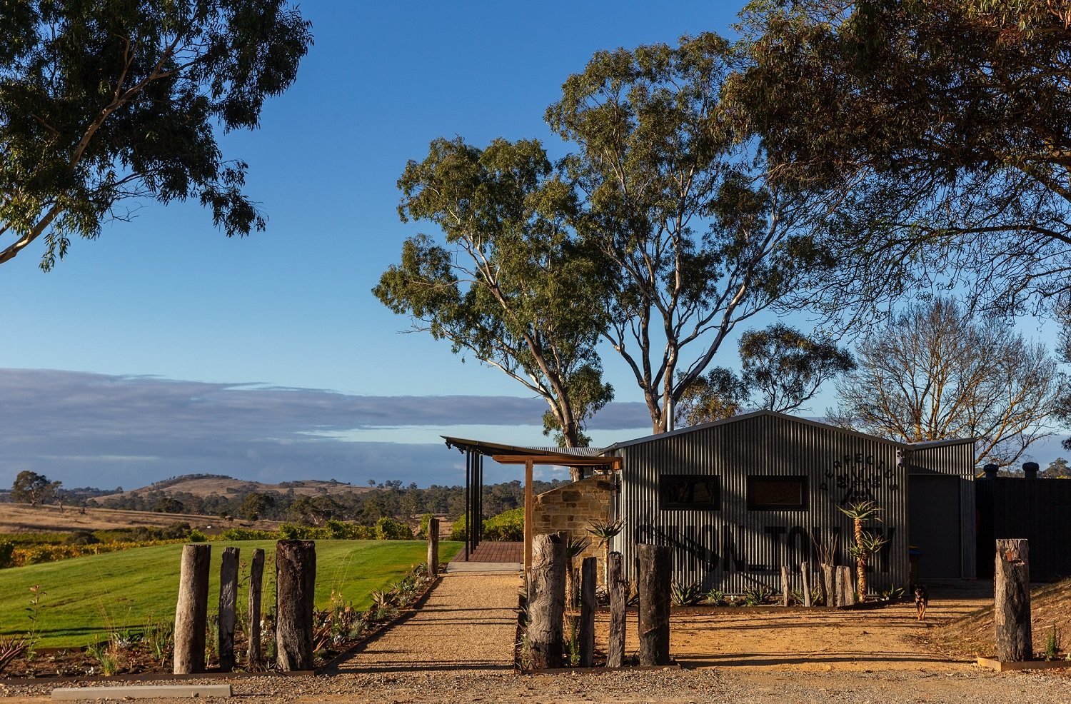 Simon Tolley Wines - Adelaide Hills